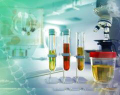 Afbeelding voor Biomerkers van voedsel en nutriënteninname Deel 2: Voedingsnavraagmethoden